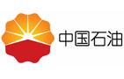 中国shi油